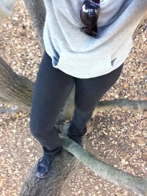 tree climb 1